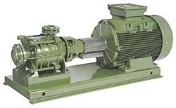 شراء Electropompe centrifuge horizontale SAER TM