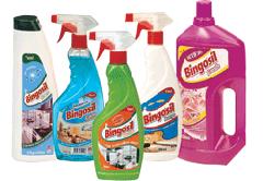 Window Cleaners Bingosil