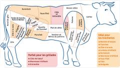 Viande Bovine Halal