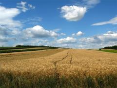 Matériel et accessoires destinés à  agricole.