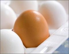 Emballage pour œufs