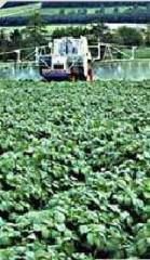 Produits phytosanitaires