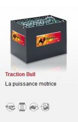 Batterie Banner Traction Bull