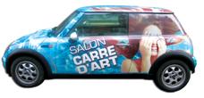 Habillage de vehicule