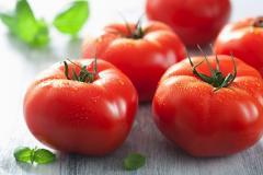 Tomatoes fresh